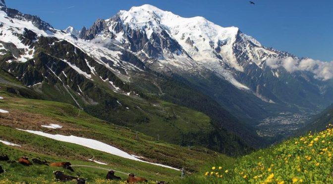 Letni urlop w górach i organizacja wyjazdu.